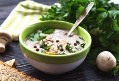 Суп пюра гриба с allspice, петрушкой, champignons и toas Стоковые Фотографии RF