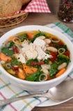 суп ресторана еды цыпленка китайский Стоковая Фотография RF