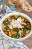 суп ресторана еды цыпленка китайский Стоковое Фото