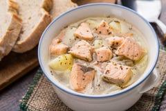 Суп рыб в шаре Стоковые Изображения