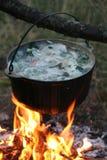 суп рыб Стоковая Фотография
