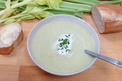 Суп сельдерея Стоковые Изображения