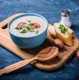 Суп сливк гриба Champignon Стоковые Изображения RF