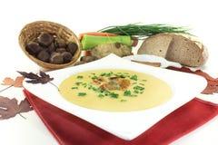Суп сладостного каштана Стоковое Изображение RF