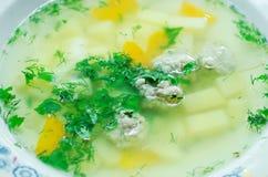 Суп с фрикадельками и зелеными цветами стоковая фотография