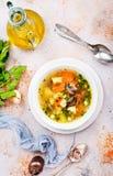 Суп с mushhrooms стоковое изображение