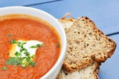 Суп томата с базиликом и свежим крупным планом черного хлеба стоковое изображение rf