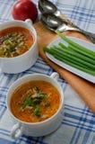 Суп томата с рисом и мясом Стоковое Фото