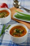 Суп томата с рисом и мясом Стоковые Изображения