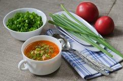 Суп томата с рисом и мясом Стоковые Изображения RF