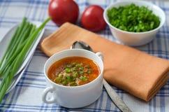 Суп томата с рисом и мясом Стоковое фото RF