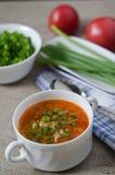 Суп томата с рисом и мясом Стоковые Фото
