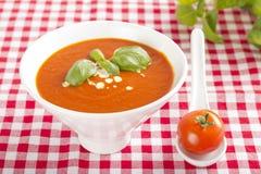 Суп томата Стоковое фото RF