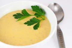 суп тыквы плиты Стоковые Изображения