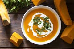 Суп тыквы стоковая фотография