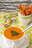 Суп тыквы с обломоками моркови Стоковое фото RF