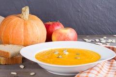 Суп тыквы с семенами тыквы Стоковое Фото