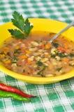 Суп фасолей с лист и перцами петрушки Стоковые Фотографии RF