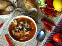 Суп фасоли Стоковая Фотография RF