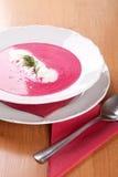Суп фермера, сливк и красные свеклы стоковая фотография rf
