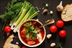 Суп, хлеб и овощи борща на таблице темной древесины стоковая фотография rf