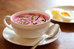 суп холода свеклы Стоковые Фотографии RF