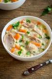 Суп цыпленка и диких рисов стоковое изображение