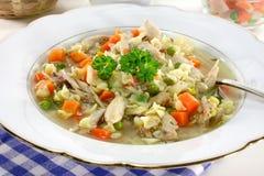 суп цыпленка Стоковые Фотографии RF