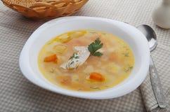 суп цыпленка Стоковые Изображения RF