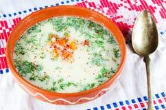 суп цыпленка Стоковые Изображения