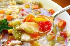 суп цыпленка стоковое изображение