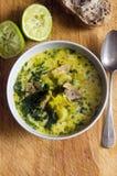 Суп цыпленка и кокоса Стоковое фото RF