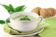 суп чеснока одичалый Стоковое Изображение RF