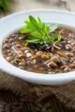Суп чечевицы Брайна с грибами в шаре стоковые изображения