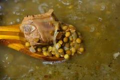 Суп чечевицы с мясом стоковые изображения