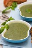 Суп шпината и брокколи Стоковое Фото