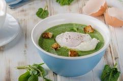 Суп шпината с краденным яичком Стоковая Фотография RF