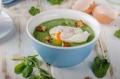 Суп шпината с краденным яичком Стоковые Фотографии RF