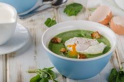 Суп шпината с краденным яичком Стоковое Изображение