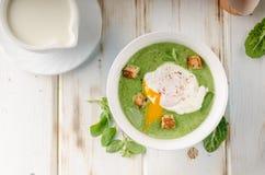 Суп шпината с краденным яичком Стоковые Изображения RF