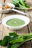 Суп шпината cream с свежим шпинатом выходит на деревянное backgrou Стоковое Изображение