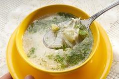 суп Стоковые Изображения RF