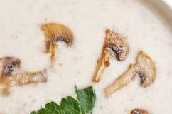Суп Creme Стоковые Изображения RF