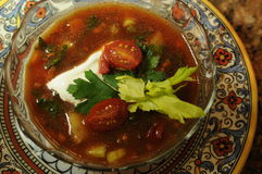 Суп Gazpacho Стоковое фото RF