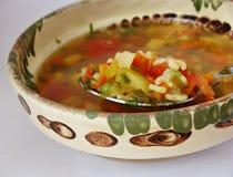 Суп Lovage Стоковое Изображение RF