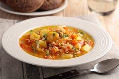 Суп Vegan стоковое изображение