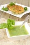 Суп Zucchini и зажаренный zucchini Стоковые Изображения RF