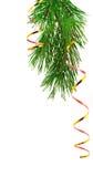 сусаль сосенки ветви Стоковые Фотографии RF
