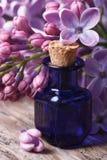 Суть ароматичной сирени цветет конец-вверх на таблице Стоковое Изображение RF