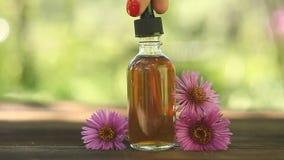 Суть цветков на таблице в красивом стеклянном опарнике акции видеоматериалы